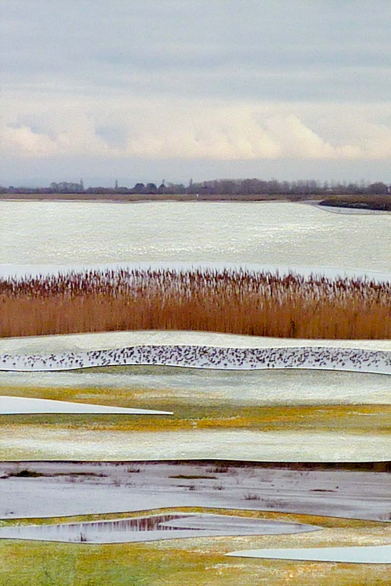 Steart Marshes 1 by Lesley Roberts